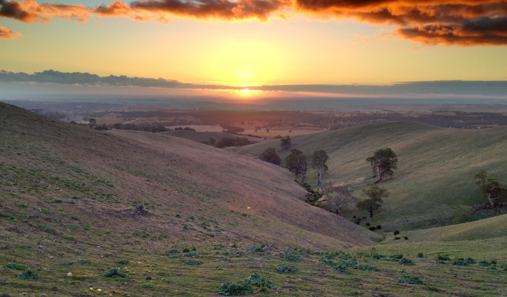 Barossa Valley - Sunset