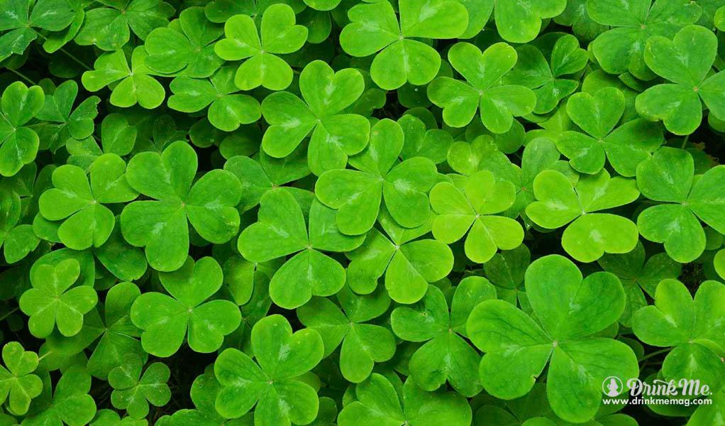 Drink Me 6 Spirits St Patricks Day Whiskey