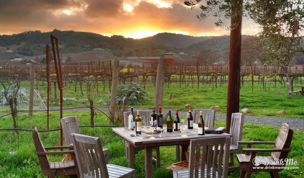 5 Napa Valley Wineries We Feel You Really Should Know About - Drink Me