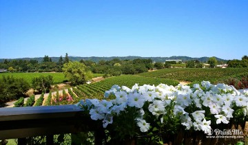 Healdsburg Winery Guide Best Wineries in Healdsburg drinkmemag.com drink me passalacqua