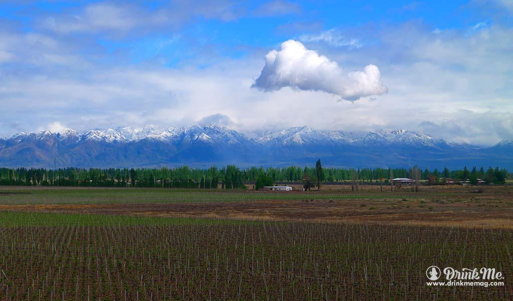 Patagonia Unusual Wine Regions drinkmemag.com drink me