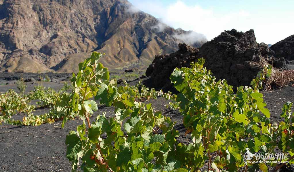 Unusual Wine Regions drinkmemag.com drink me cape verde