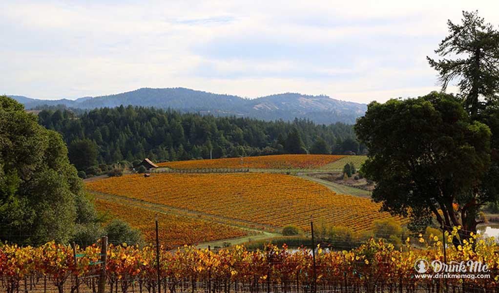 Panthea Winery Vineyards drinkmemag.com drink me wine1