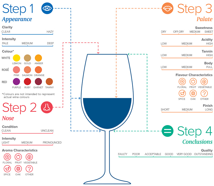 WSET-Newsletter_Infographic