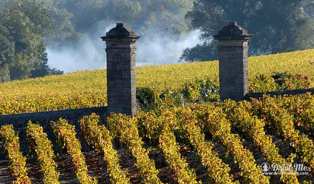 drinkmemag.com bordeaux everyday vordeaux wine millennial cheap bordeaux wine drink me 17