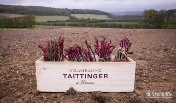 Domaine_Evremond_Taittinger 3 drinkmemag.com drink me Champagne Taittinger