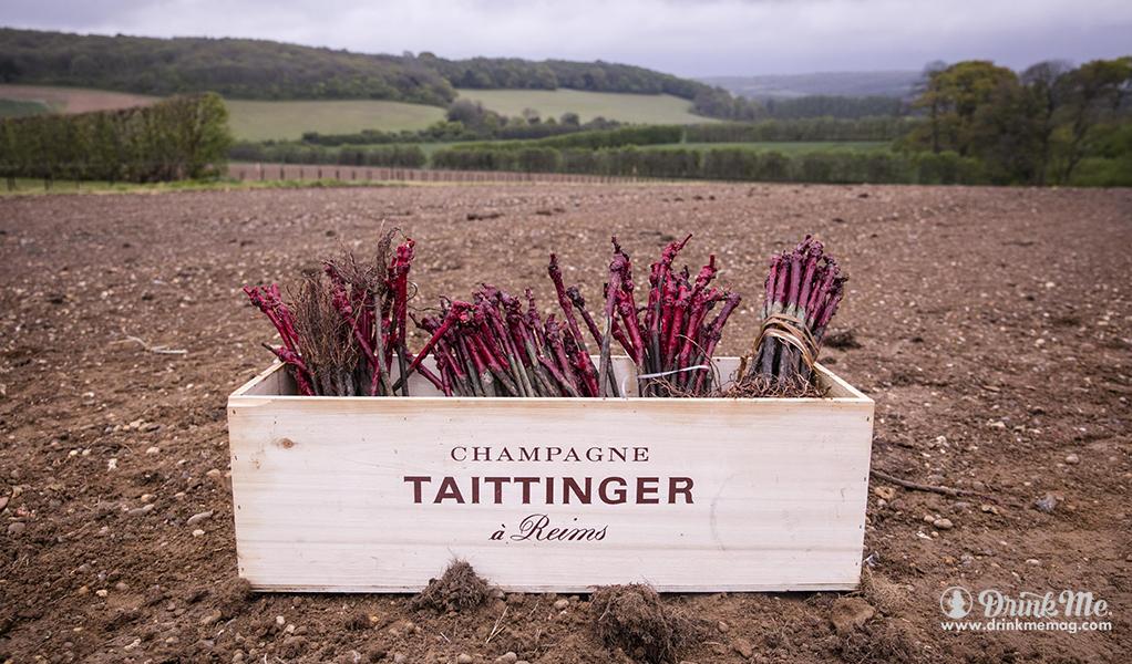 Domaine_Evremond_Taittinger 3 drinkmemag.com drink me Champagne Taittinger