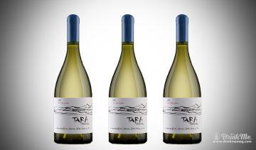 tara Atacama drinkmemag.com drink me Ventisquero