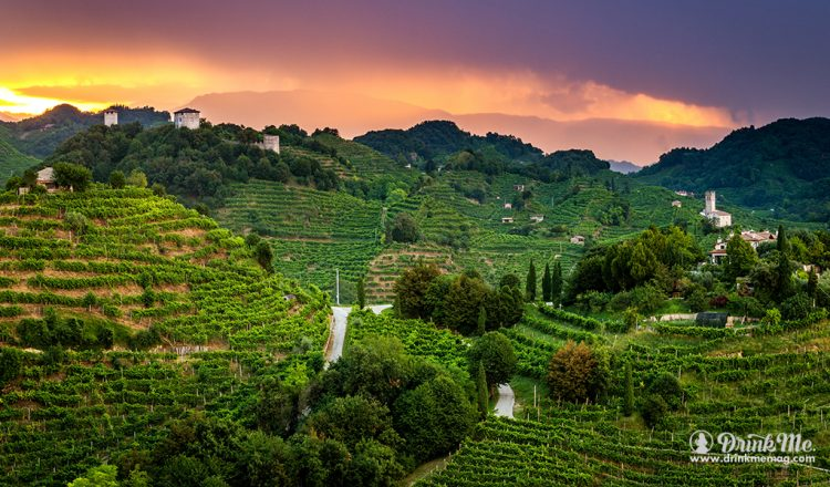 Prosecco Superiore DOCG Sparkling Wine Alba Sulle Torri di Credazzo drinkmemag.com drink me Gregory White Project