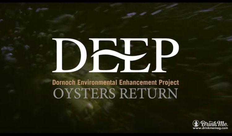 DEEP Project 2 drinkmemag.com drink me DEEP